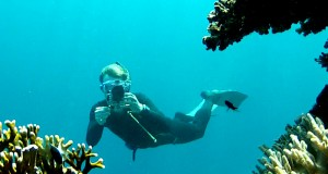 snorkeling and taking photos in the Red Sea