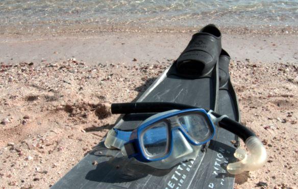 essential snorkeling equipment