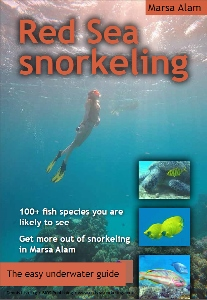 cover of the ebook Red Sea snorkeling - the easy underwater guide to the fish
