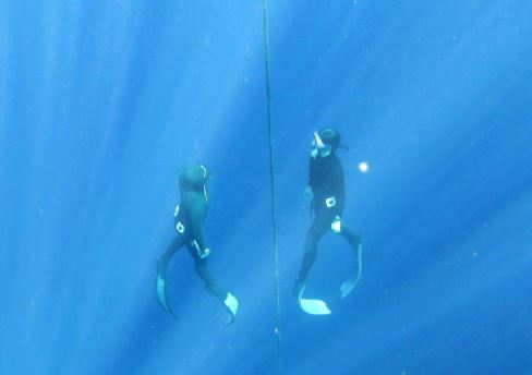 Freediving in the Red Sea - here in Sharm el sheikh