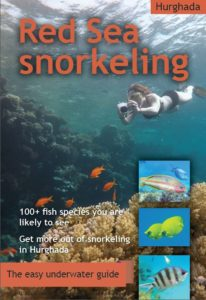 Red Sea snorkeling guidebook to fish in Hurghada