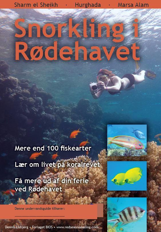 forside til hæftet snorkling i Rødehavet: Sharm - Hurghada - Marsa Alam