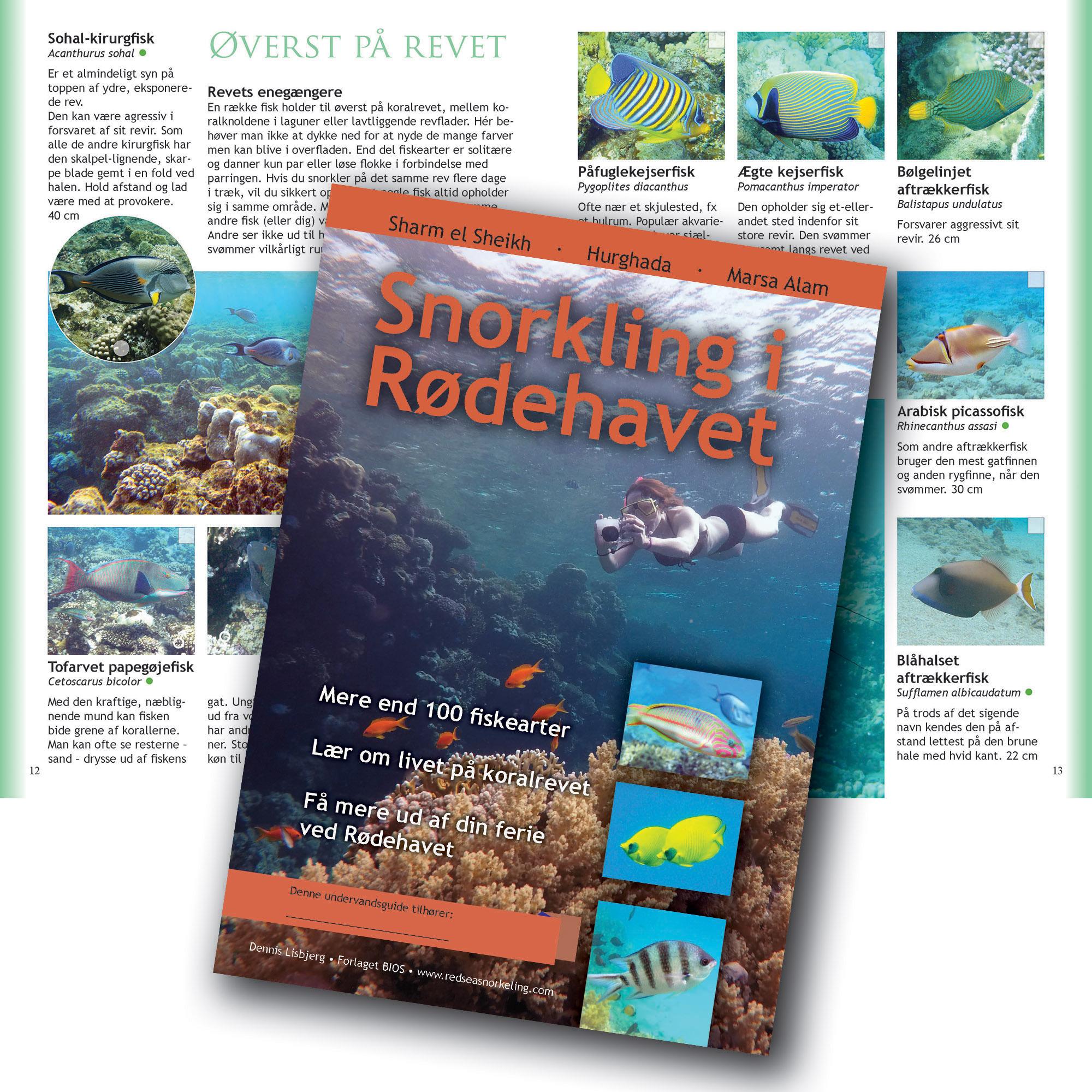opslag fra haefte om fisk i rødehavet